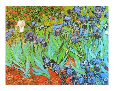 Vincent van Gogh Schwertlilien