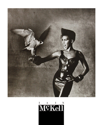 Iain McKell Black Lady with Falcon