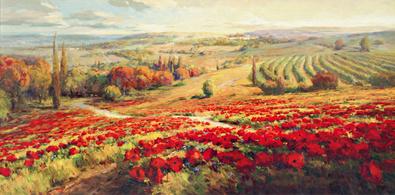 Roberto Lombardi Red Poppy Panorama