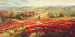 Roberto Lombardi Red Poppy Panorama