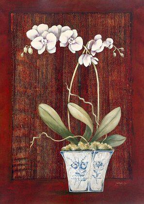 Janet Tava 2er Set 'Plum Orchid' + 'Chartreuse Orchid'