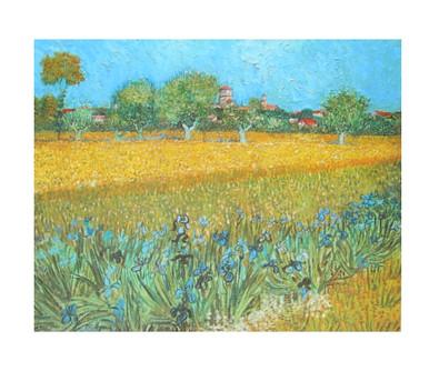 Vincent van Gogh Arles les irises