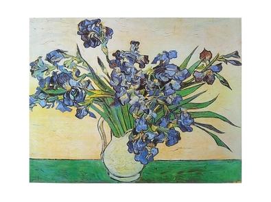 Vincent van Gogh Irisstrauss
