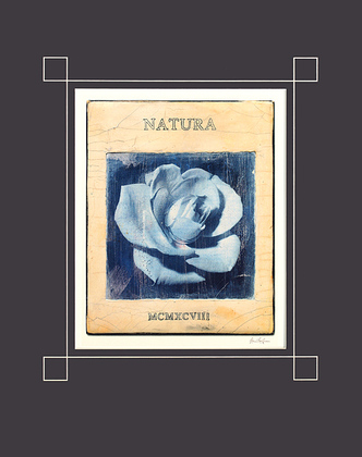 Stuart McQueen Natura (40x50cm)