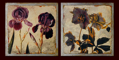Pamela Murray 6er Set 'Iris Concerto Detail' + 'Helleborus Fragment Detail' + 'Wild Rose Fragment Detail' + 'Marigold Fragment Detail' + 'Rose Fragment Detail' + 'Daffodil Fragment Detail'