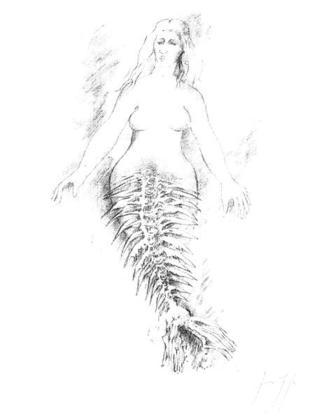 Guenter Grass Die kleine Meerjungfrau