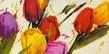 Antonio Massa Tulips